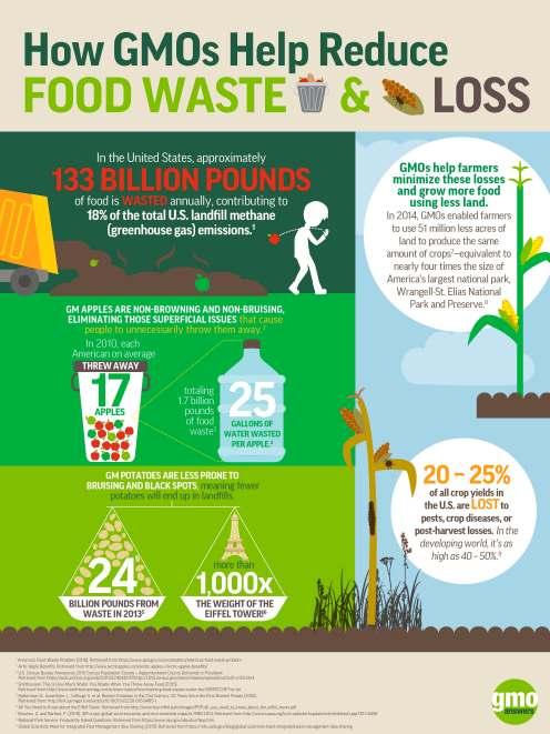 GMO_Infographic_FoodLoss&Waste JPG.jpg